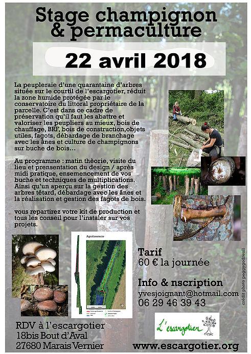 Stage champignon et permaculture au Marais Vernier (27) @ L'escargotier | Marais-Vernier | Normandie | France