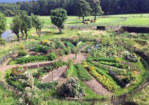 Cours Certifié de Permaculture en Ardenne belge @ Ferme bio de Desnié  Juin 25 - Juin 29 + Oct 8 - 12 (2 x 5 jours) @ Ferme de Desnié