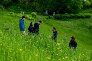 Cours de Conception en Permaculture en Saône-et-Loire (71) @ l'îlot des Combes